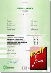ZD-Zertifikat Deutsch-B1
